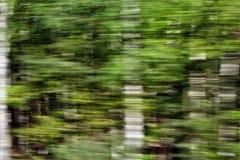 La visión desde la ventana del tren Imágenes de archivo libres de regalías