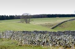 La visión en la parte inferior de Askham bajó Foto de archivo