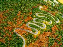 La vista aérea de la carretera con curvas con otoño coloreó el bosque imagen de archivo