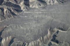 La vista aérea de Nazca alinea - el geoglyph del colibrí, Perú Foto de archivo