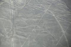La vista aérea de Nazca alinea geoglyphs en Perú Imagen de archivo