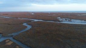 La vista aérea del invierno del pantano de la bahía de Delaware colorea New Jersey almacen de video