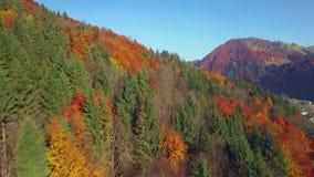 La vista aérea del otoño colorea Cárpatos metrajes