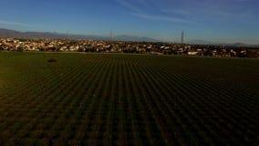 La vista aérea panorámica del paisaje del campo brims almacen de video