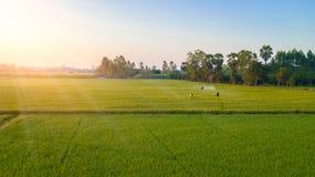 La vista aerea, agricoltori sta utilizzando una macchina dello spruzzatore nel campo Fotografie Stock Libere da Diritti