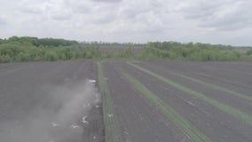 La vista aerea del trattore guida attraverso il campo e le piantine delle materozze video d archivio