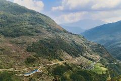 La vista aerea della piantagione a terrazze sulla collina pende nel Nepal Fotografia Stock