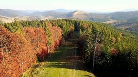 La vista aerea della strada della montagna ed il bello autunno abbelliscono archivi video