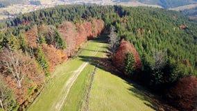 La vista aerea della strada della montagna ed il bello autunno abbelliscono stock footage