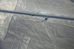 La vista aerea di Nazca allinea - albero e passa i geoglyphs, Perù Immagine Stock
