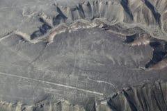 La vista aerea di Nazca allinea - il geoglyph del colibrì, Perù Fotografia Stock