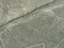 La vista aerea di Nazca allinea - il geoglyph del ragno, Perù Fotografie Stock
