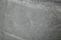 La vista aerea di Nazca allinea - il geoglyph del ragno, Perù Fotografia Stock