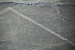 La vista aerea di Nazca allinea - il geoglyph della balena, Perù Fotografia Stock