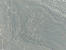 La vista aerea di Nazca allinea - il geoglyph delle mani, Perù Immagini Stock Libere da Diritti
