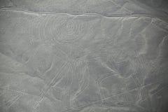 La vista aerea di Nazca allinea - Monkey il geoglyph, Perù Fotografia Stock