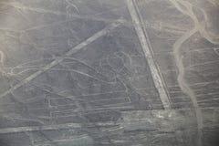 La vista aerea di Nazca allinea - ripeti meccanicamente il geoglyph, Perù Fotografia Stock Libera da Diritti