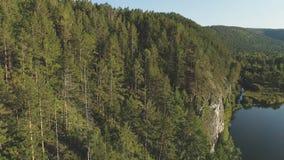 La vista aerea di una foresta densa in colline si avvicina al fiume di estate stock footage