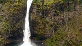 La vista aerea eleva sulla cascata della gola del fiume Columbia archivi video