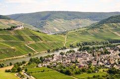 La vista al fiume Mosella e Marienburg fortifica vicino alla regione del villaggio Puenderich - del vino di Mosella in Germania Immagini Stock Libere da Diritti