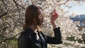 La vista alta vicina dei touchs caucasici piacevoli della ragazza ed odora i fiori bianchi del ciliegio con il fondo impressionan archivi video