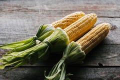 la vista ascendente cercana de las mazorcas de maíz maduras frescas arregló fotos de archivo libres de regalías
