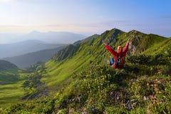 La vista con le alte montagne rocciose Una ragazza si siede sull'erba verde fra i fiori Raggi di Sun Paesaggio di ESTATE Fotografia Stock