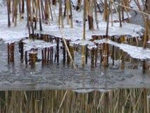 La vista dal nostro arcipelago e dal vedere sta congelandosi Immagine Stock