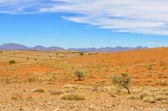 La vista dal rifornisce l'allerta della collina - libbra di Wilpena Fotografia Stock