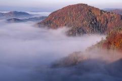 La vista dal vyhlidka di Vilemina trascura, la Svizzera della Boemia, repubblica Ceca Fotografia Stock Libera da Diritti