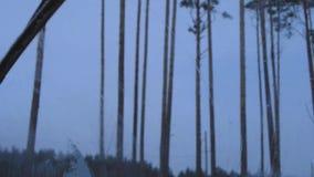 La vista dall'automobile, tergicristalli, automobile, neve sul vetro dell'automobile stock footage