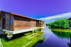 La vista de invitación de los argumentos del hotel con el chalet contiene la situación en agua de mar natural en jardín tropical  Imagen de archivo