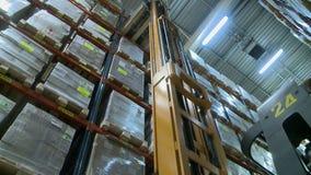 La vista de la carretilla elevadora levanta la plataforma en almacén de almacenamiento almacen de metraje de vídeo