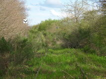 La vista de una pista/de una naturaleza abandonadas se reafirma Foto de archivo libre de regalías