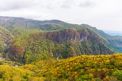 La vista del bosque en la estación del otoño en el teleférico en Akechidaira plat imagen de archivo libre de regalías