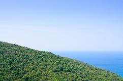 La vista del bosque verde en la ladera con el mar Imagen de archivo libre de regalías