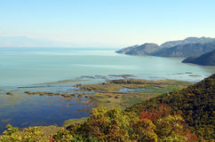 La vista del lago Skadar un giorno soleggiato di autunno Fotografia Stock Libera da Diritti