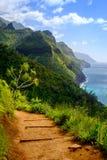 La vista del paesaggio della linea costiera del Na Pali e Kalalau trascinano, Kauai Immagine Stock