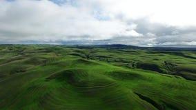 La vista del paesaggio della natura dei prati e delle colline verdi ha sparato sulla macchina fotografica del fuco video d archivio