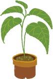 La vista del vaso da fiori royalty illustrazione gratis