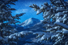 La vista dell'alta montagna attraverso la neve si è rannicchiata abeti Fotografie Stock