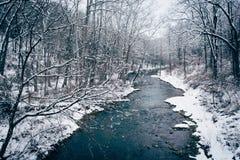 La vista dell'inverno di polvere nera cade nella contea di Baltimore rurale, Maryla fotografie stock libere da diritti