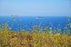 La vista dell'isolotto di Filfla con la parte della costa di Qrendi sulle FO Immagine Stock Libera da Diritti