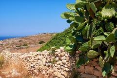 La vista della costa sud di Malta Immagini Stock