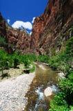 La vista della giunzione del canyon a Zion Immagini Stock
