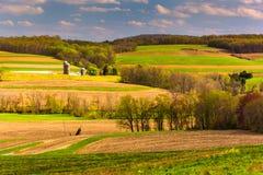La vista della primavera dei campi dell'azienda agricola e di Rolling Hills a York rurale conta Immagine Stock