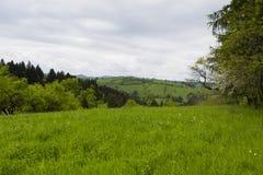 La vista della primavera dell'agricoltura sistema in una zona di montagna Fotografia Stock