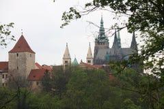 La vista della st Vitus Cathedral nel castello di Praga Fotografia Stock Libera da Diritti