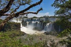 La vista delle cadute del Iguazu Falls Fotografie Stock Libere da Diritti