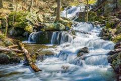 La vista di Crabtree cade in Ridge Mountains blu della Virginia, U.S.A. immagine stock libera da diritti